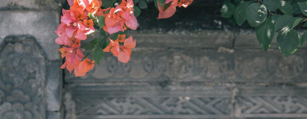 LunarAbundance_Flowers